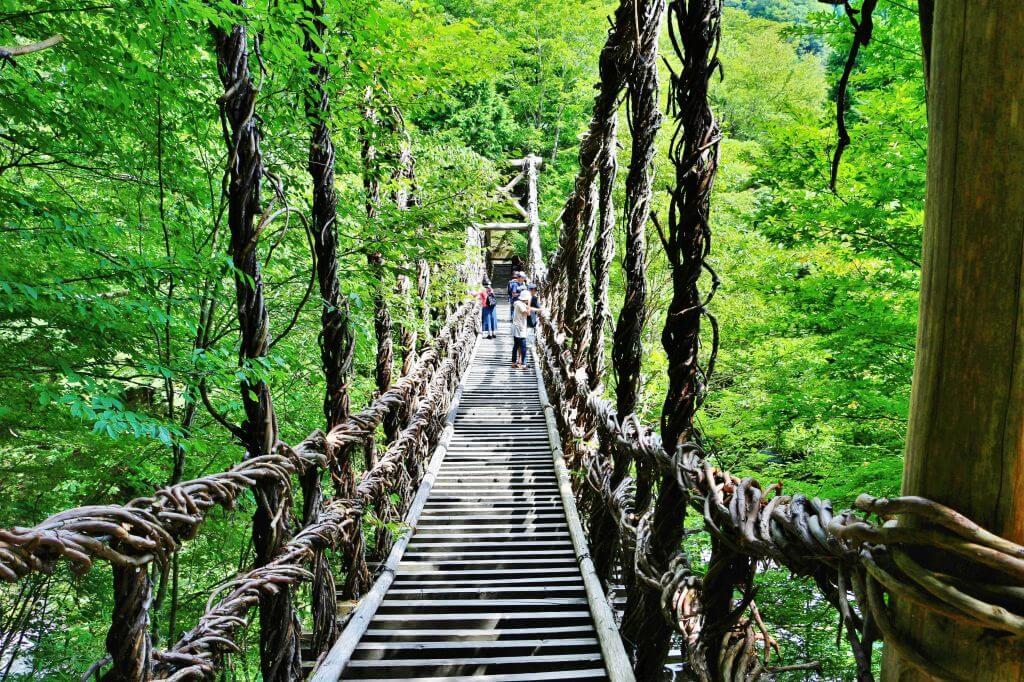 徳島県にあるかずら橋の写真
