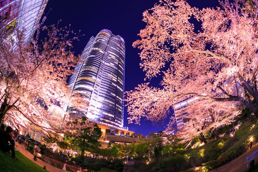 魚眼レンズで撮影した夜景の写真