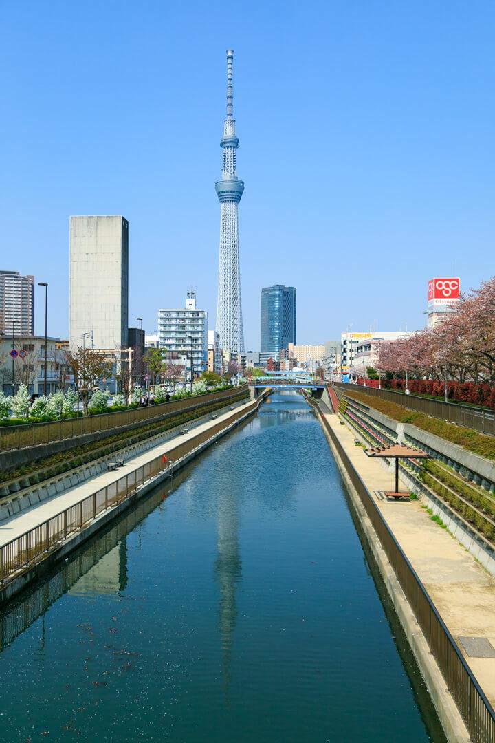 亀福神橋から撮影した東京スカイツリーの写真