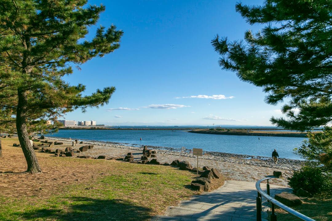 葛西臨海公園から撮影した東京湾の写真